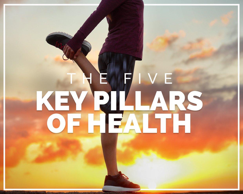 The five key pillars of health