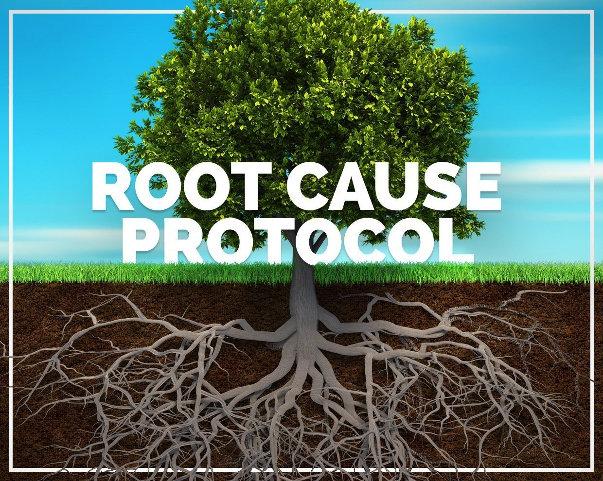 Root Cause Protocol