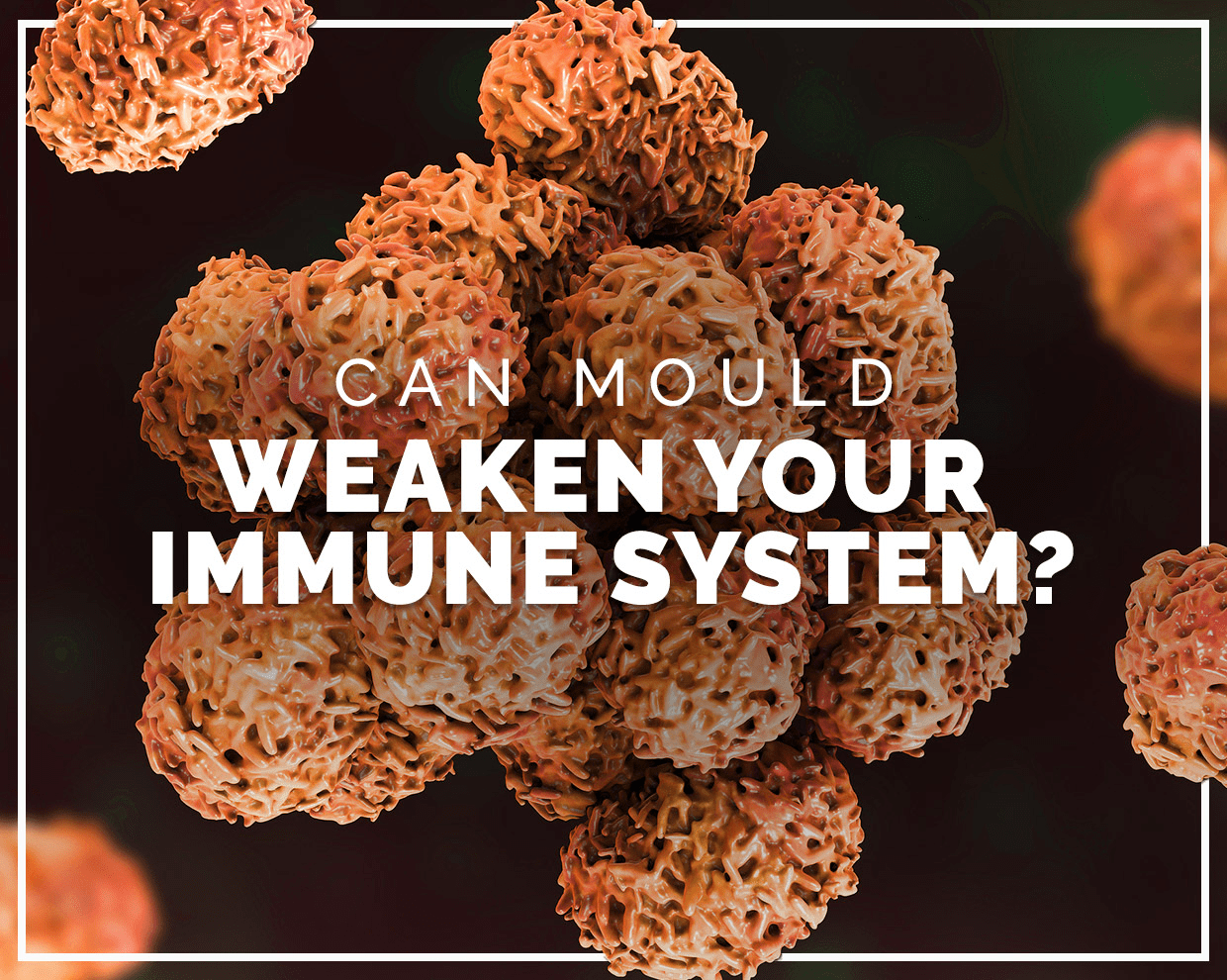 Can mould weaken your immune system?