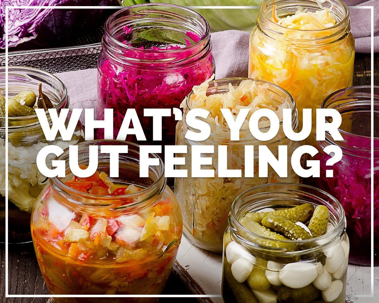 What's Your Gut Feeling